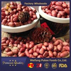 Rohe Erdnusskerne/Red Skin/Superior/Gesunde Snacks/Pukee Foods/Sunreal