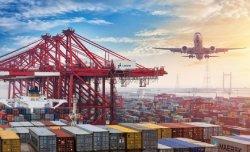 Desde China a la puerta a puerta en todo el mundo Logística Internacional Precio Servicio Express Servicio de break bulk buque ro-ro Amazonas Servicio Puerta a Puerta