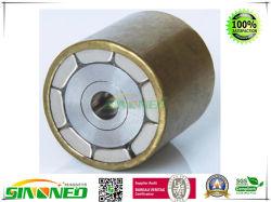 Rotor del Motor Magnético