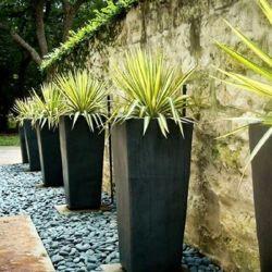 Tall Fiberclay carré évasé de ciment pour le jardin d'aménagement paysager du semoir