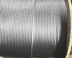 Roestvrij staal 304/316 Kabel van de Draad met Uitstekende kwaliteit