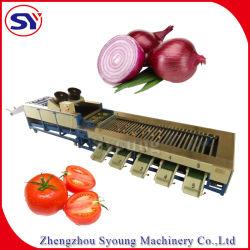 Automatisiertes Frucht-Gemüse, das das Einwachsen trocknend sich wäscht, das Ordnen sortierend, Maschinen-System übermittelnd