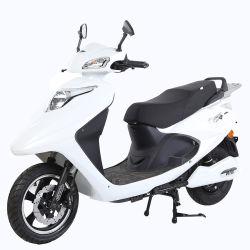 Novo Estilo de estilo de movimento ODM OEM Scooter eléctrico/Motociclo