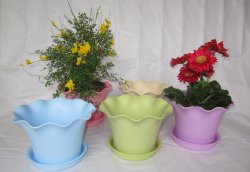 La vente d'injection de plastique chaud OEM Pot de Fleurs de semoir
