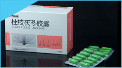 여자 자궁 Fibroids를 위한 중국 Tga 공장 약초 Guizhi Fuling 캡슐