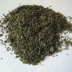 Xun ma Zi بيع ساخنة تزود الشركة المصنعة الصينية طب الأعشاب بذور النيتل