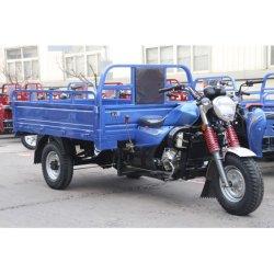 Driewieler van de Benzine van het Merk 250cc van Futian de Vijfsterren