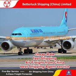 Воздушные грузовые перевозки на Гуаме Агана из Китая Шэньчжэнь транспортные логистические услуги