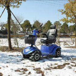 Autoped van de Mobiliteit van de Autoped 100ah van de hoge Macht 1400W de Elektrische