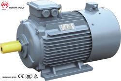 HmivpモーターまたはHmivpのセリウム、CCCが付いている三相頻度可変的なおよび速度規則モーター