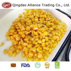 Las conservas de calidad superior los granos de maíz dulce