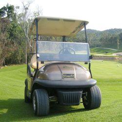 8 Reifen Champage Farben-der elektrischen Golf-Zoll Karren-2 Seaters