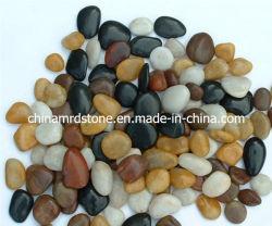 """حجارة نهر لامعة متعددة الألوان للحديقة أو """"فناء"""""""