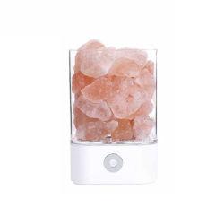 De nieuwe Zoute Lamp van de Lampen Himalayan Zoute USB van de Aanraking van het Product van 2020 Neigende Schemerigere Roze