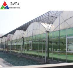 野菜のための熱い販売の二重層のプラスチックフィルムのアーチ形にされた温室