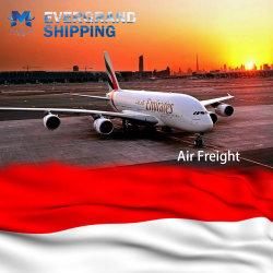 インドネシアにかジャカルタまたはBelawanまたはスマラン出荷する専門の中国の空輸貨物