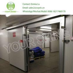 L'imperméabilisation à bas prix PU mur extérieur de panneaux sandwich de toit