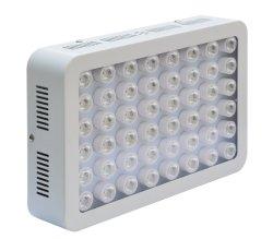300W温室LEDは屋内プラントのために軽く育つ