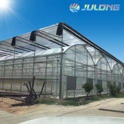 農業のプラスチックフィルムの温室工学装置デザインおよびインストール温室は骨組構築を取除いた