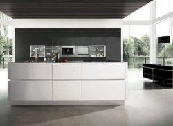 Moderni di qualità superiore progettano gli armadi da cucina per il cliente con lo sguardo operato