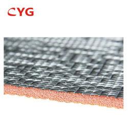 폴리에틸렌 플라스틱 주형 열 지붕 절연제