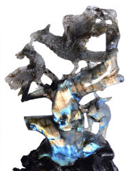 Flash Labradorite perroquets & Sculpture de kangourou, Souvenir Figurine (T89)