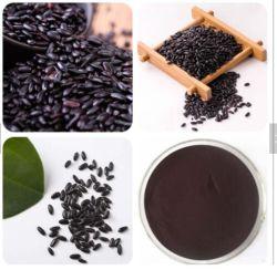 Het organische Zwarte Poeder van de Rijst