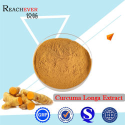 Uittreksel het van uitstekende kwaliteit van Longa van de Kurkuma (CAS: 458-37-7)