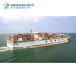 Taux de fret de la mer de Chine à l'Inde Professionnel Shenzhen Guangzhou Cheapest Fast Freight expédition