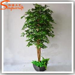 Nuovo disegno decorativo artificiale Live Ficus Bonsai pianta albero