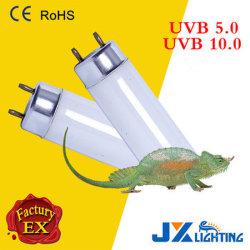 Reptisun 5.0 10.0 높은 산출 UVB 형광성 전구 파충류 UV 빛