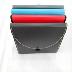 Archivio espandentesi del portafoglio del sacchetto portatile del documento con la maniglia e l'inarcamento