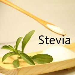 Bester Preis-natürlicher Stoff-Pflanzenauszug-RaStevia Stevioside