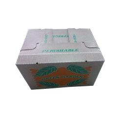 Cire de papier ondulé Emballage pour les légumes /Fruits