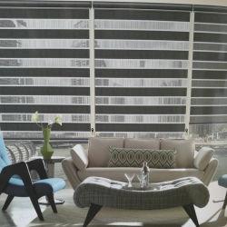 Cebra venecianas Persianas verticales de la ventana