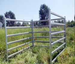 Rancho ganadero intensivo al aire libre el ganado ovino paneles patio
