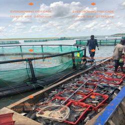 Flotante de HDPE de jaula de la acuicultura Piscicultura