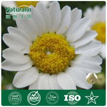 Orgánicos Naturalin Chrysanthemum parthenium extracto, el tratamiento de la migraña (NAT-050)