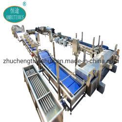 500-1000kg/H de Lijn van de Verwerking van chips