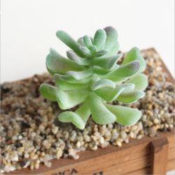 Pianta di plastica del Succulent del fiore artificiale del PVC del Faux della decorazione dell'interno di falsificazione