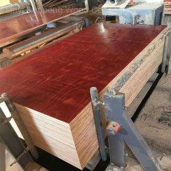 1220X2440mmの構築の合板の閉める合板の型枠のMarineplexの合板