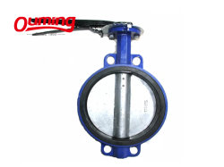 Revêtement époxy haute qualité en fonte Type de luge des robinets à papillon