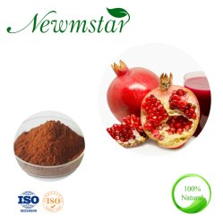Fresco Natural ISO9001 Certified Extrato de romã em pó na China