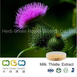 L'estratto naturale del cardo selvatico di latte dell'estratto della pianta per protegge l'erba di funzione epatica di erbe