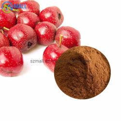 مقتطف من هاوثورن/Hawthorn Berry Extract Powder/Hawthorn Leaf Extract