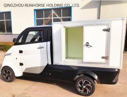 Trasporto Electric Cargo Van Car della città per la vendita calda