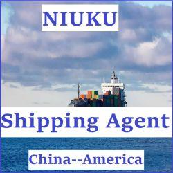 FCL/LCL verschepend Overzees van de Dienst Vervoer van China aan Verenigde Staten
