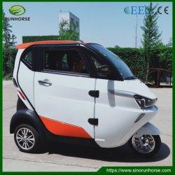La mini automobile elettrica pura automatica elettrica 3 spinge l'automobile di famiglia delle 3 sedi