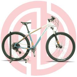 29인치 알로이 6061 마운틴 바이시클 디스크 브레이크 12초 스포츠 자전거