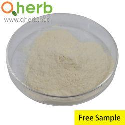 Kräuterextrakt Panax Notoginseng Wurzel / Blatt-Extrakt Gesamt Ginsenosid & Notoginsenoside HPLC-Pflanzenextrakt